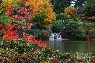 Waterfall At Japanese Garden Print by Nancy Mueller