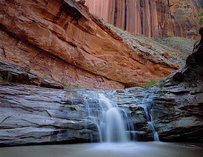 Waterfall In Coyote Gulch Print by Panoramic Images