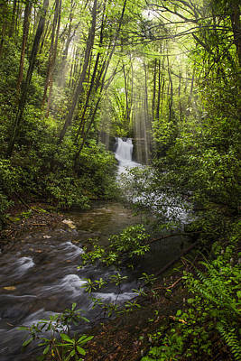 Waterfall In The Forest Print by Debra and Dave Vanderlaan