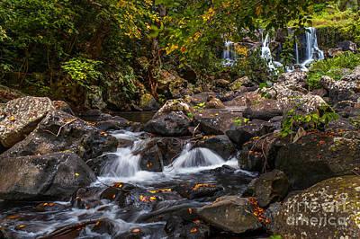 Tropical Photograph - Waterfalls Of Eureka. Mauritius by Jenny Rainbow