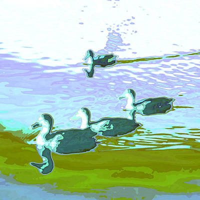 Wet Fly Digital Art - Waterfowl-abstract by Tom Druin