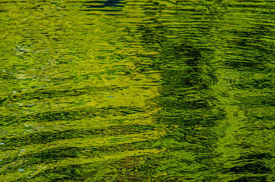 Water's Green Print by Roxy Hurtubise