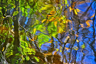 Ambiguous Photograph - Watery Autumn Reflection by Frozen in Time Fine Art Photography