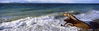 Waves And Driftwood On The Beach Print by Panoramic Images