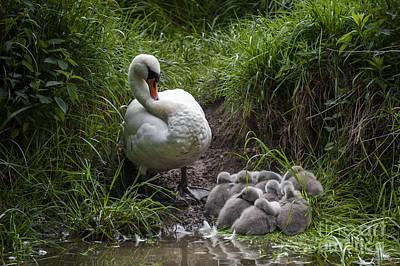 We All Here Mum Print by Svetlana Sewell