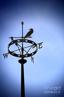 Book Jacket Design Photograph - Weather Vane by Craig B