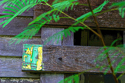 Weathered Wood And Old Paint Print by Linda Phelps