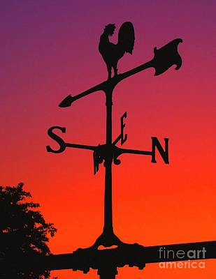 Weathervane At Sunset Print by Nick Zelinsky