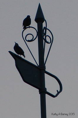 Weathervane Silhouette With Starlings Print by Kathy Barney