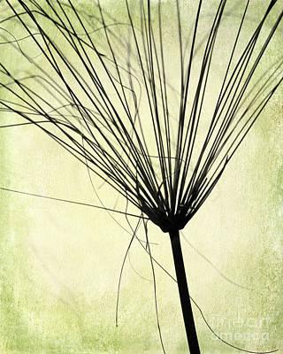 Weed In Green Print by Sabrina L Ryan