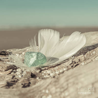 Seaglass Photograph - Weighted Feathers by Lucid Mood