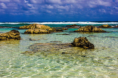 Nature Photograph - Welcome To Cozumel by Sara Frank