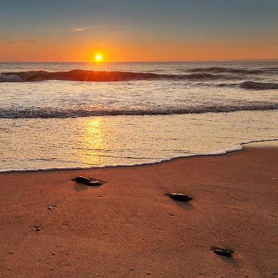 Seagull Photograph - Wellfleet Sunrise Square by Bill Wakeley