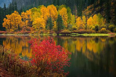 Wenatchee River Reflections Print by Dan Mihai