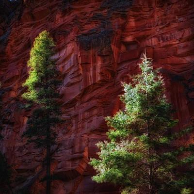 West Fork Digital Art - West Fork Rock Face Number Three by Bob Coates