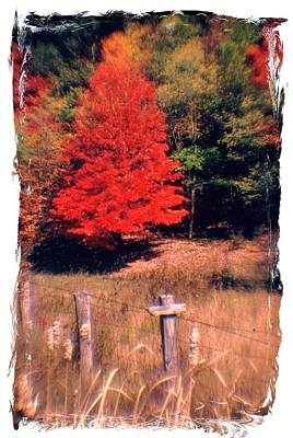 West Virginia Country Roads - Autumn Colorfest No. 1 - Germany Valley Pendleton County Wv Print by Michael Mazaika