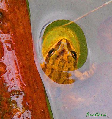 Spring Peepers Digital Art - Western Chorus Frog I by Anastasia Savage Ealy