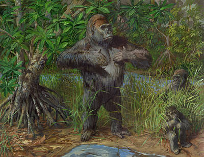Gorilla Painting - Western Lowland Gorilla by ACE Coinage painting by Michael Rothman