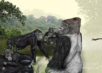 Gorilla Drawing - Western Lowland Gorilla - Gorilla Gorilla Gorilla - Zoo Interpretive Panel - Gorilla Schautafel by Urft Valley Art