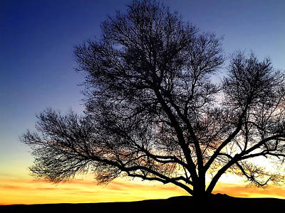 Winter Photograph - Western Sunset by Marilyn Hunt