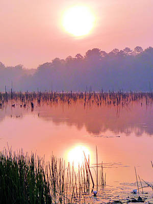 Wetlands Sunrise Print by JC Findley