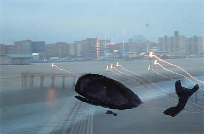 Long Exposure Mixed Media - Whale In Coney Island by Anton Kropotkinsky