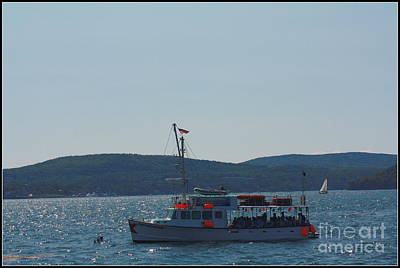 Whale Watching At Bar Harbor Print by Dora Sofia Caputo Photographic Art and Design