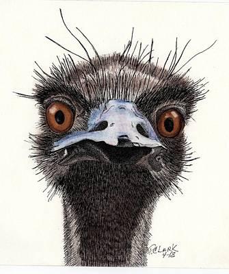 Emu Mixed Media - What?? by Pamela Clark-Cashin