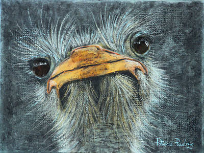 Ostrich Mixed Media - Whatcha Looking At? by Patricia Pasbrig