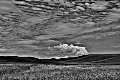Wheat Fields In The Palouse Print by David Patterson