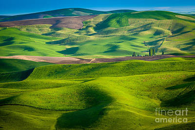 Rural Scenery Photograph - Wheat Hill by Inge Johnsson