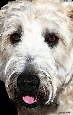 Wheaten Terrier - Happy Dog Print by Sharon Cummings