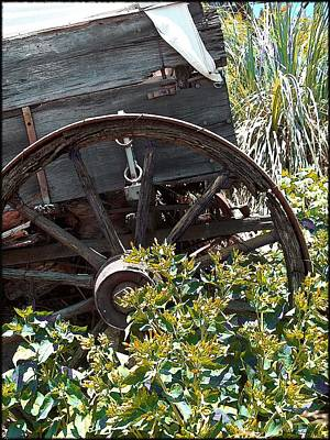 Wheels In The Garden Print by Glenn McCarthy Art and Photography