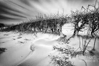 Drifting Snow Photograph - When The Wind Blows by John Farnan