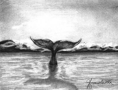 Humpback Whale Drawing - Where Can I Go by J Ferwerda