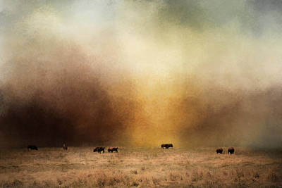 Where The Buffalo Roam Print by Jai Johnson