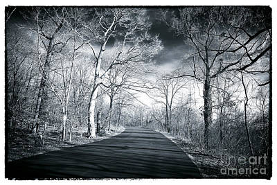 Where The Road Leads Print by John Rizzuto