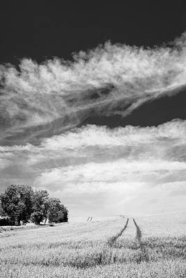 Landscape Photograph - Which Way Does This Road Go by Steven Garratt