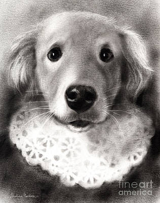 Whimsical Labrador Retriever In A Costume Print by Svetlana Novikova