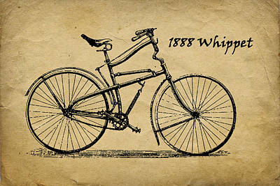 Whippet Bicycle Print by Tom Mc Nemar