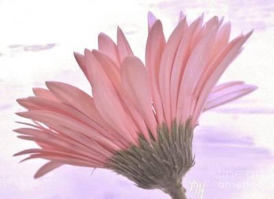 Wrap Digital Art - Whispy Daisy by Marsha Heiken
