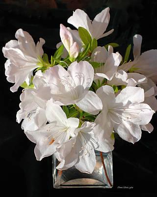 White Azalea Bouquet In Glass Vase Print by Connie Fox