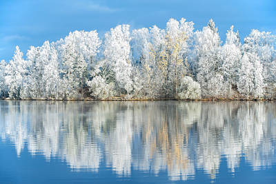 Lake Photograph - White Frost by Ari Salmela