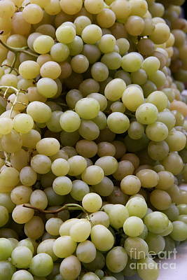 Bunch Of Grapes Photograph - White Grapes by Christiane Schulze Art And Photography