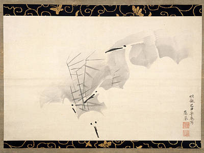 Maruyama Okyo Painting - White Herons by Maruyama Okyo