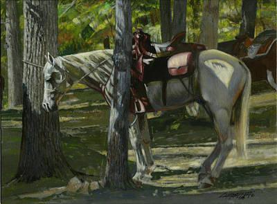 White Horse Tied Print by Don  Langeneckert