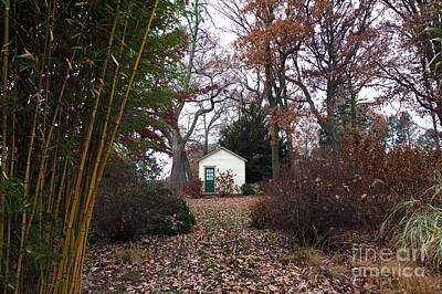 Bamboo House Photograph - White House In The Garden by John Rizzuto