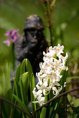 White Hyacinth In The Garden Print by  Onyonet  Photo Studios