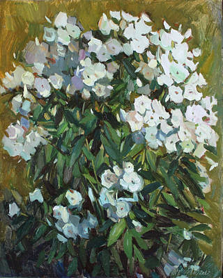 Phlox Painting - White Phloxes by Juliya Zhukova
