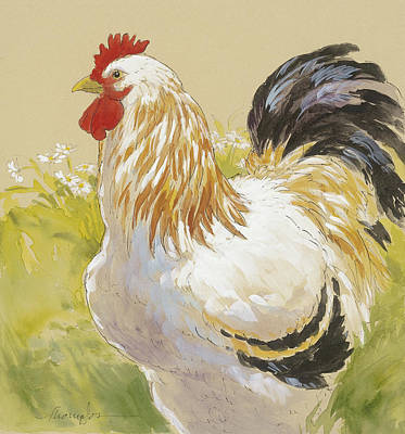 Rooster Mixed Media - White Rooster by Tracie Thompson